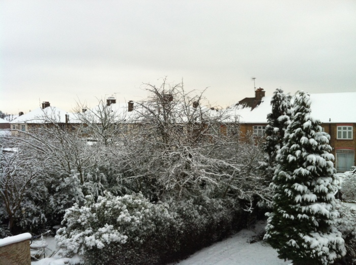 more snow 2