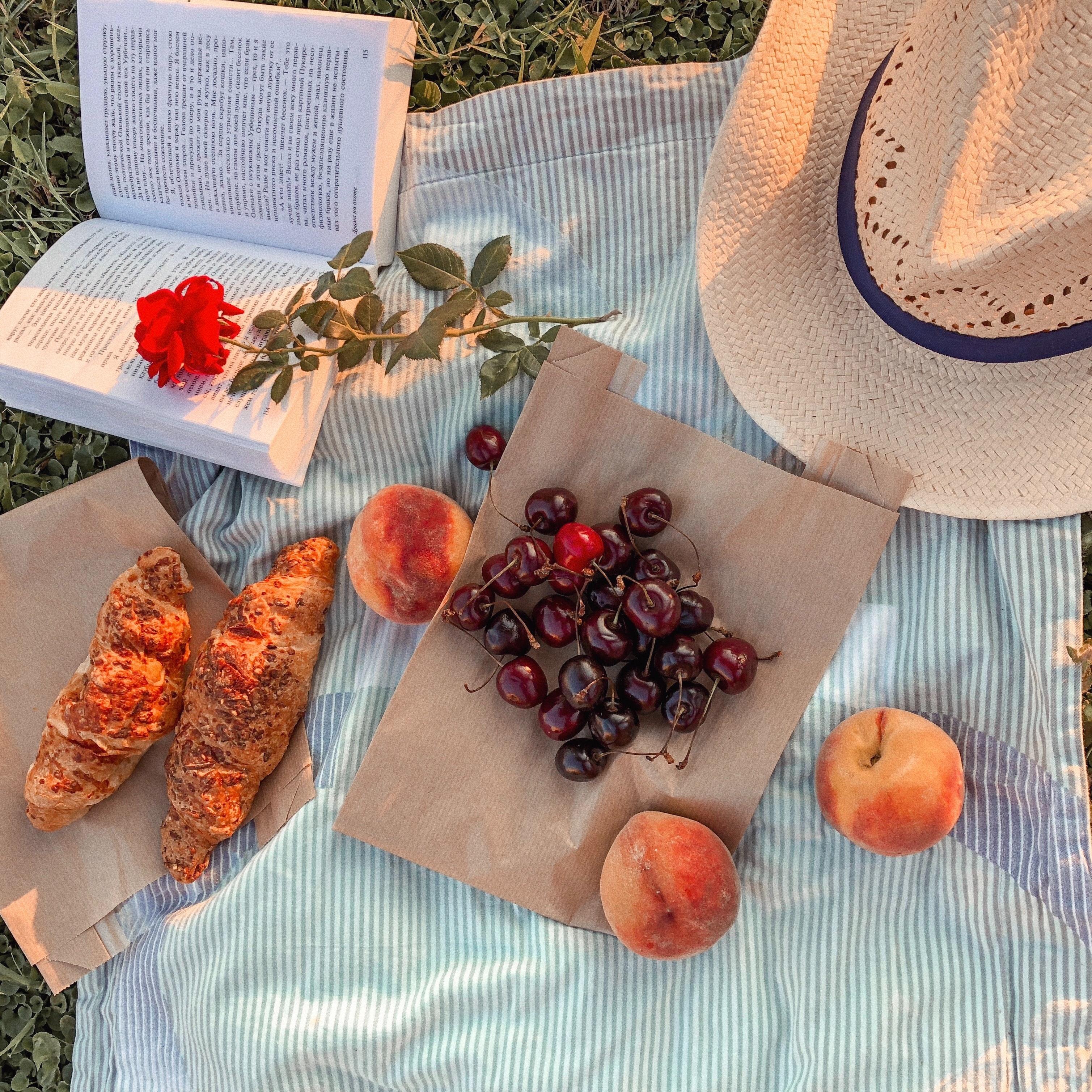 book-cherries-food-2852438
